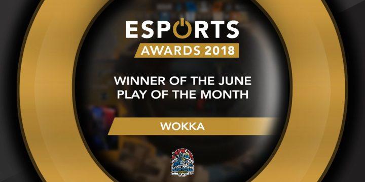 レインボーシックス シージ:日本人初の快挙、2018 Esportsアワード6月度を野良連合Wokka選手が受賞